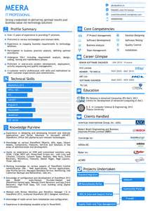Visual Resume Exles by Visual Resume For Senior Level