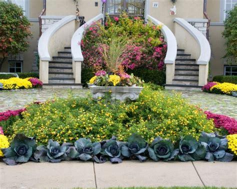 decorare gradina decorare gradina cu flori si varza ornamentala casapost ro