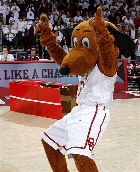 michael patten university of oklahoma mascots sooner fans love to hate news ok