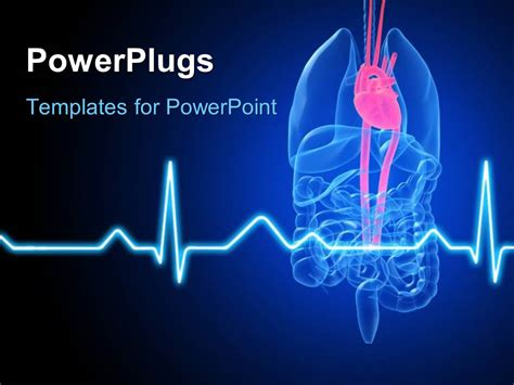 Powerpoint Template Anatomy Depiction Of Human Organs With A Highlighted Heart And Ecg Waves In Cardiac Powerpoint Template