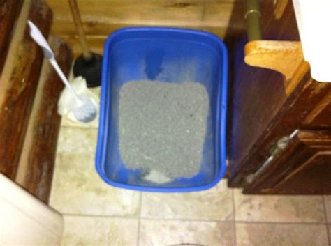 litter box in bathroom catster tips where to hide your cat s litter box in a