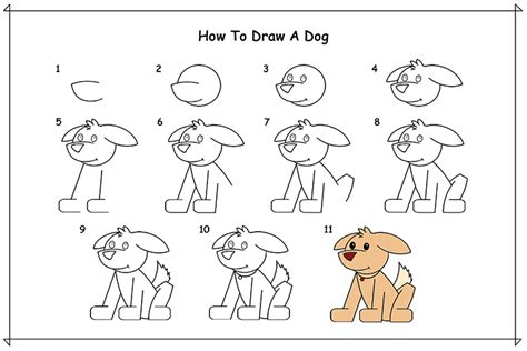 how to draw dogs how to draw a for