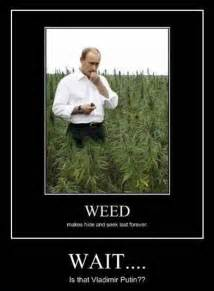 Weedmarijuana net funny marijuana jokes the funniest inside joke ever