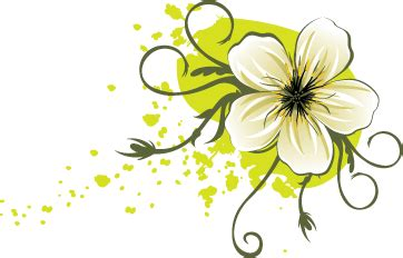 Beautiful Flowers by