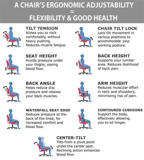 Ergonomic Features Of A Chair by Sashi Ergonomic Task Chair