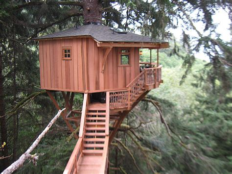 treehouse builder oregon fines cable tv host for operating as unlicensed