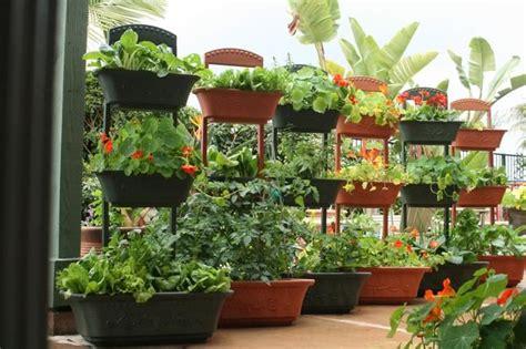 self watering vegetable garden self watering quot monkey pots quot 3 planters stacked on top