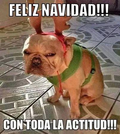 imagenes chistosas despues de la navidad felicitaciones de navidad graciosas para que compartas el