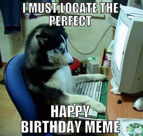 Gay Dog Meme - happy birthday memes dog wishesgreeting