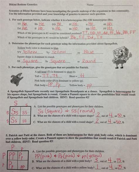 Mendelian Genetics Worksheet Answers by 100 Ap Biology Genetics Worksheet Teaching Chi