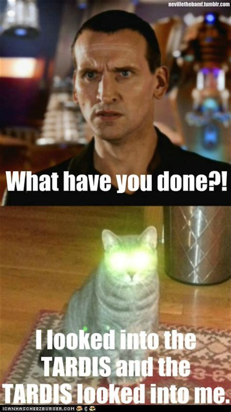 Doctor Who Cat Meme - visiting with the doctor twentysixcats