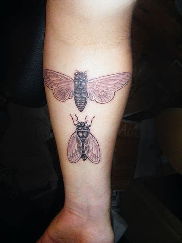 mosquito tattoo bug tattoos part 3 3d tattoos images