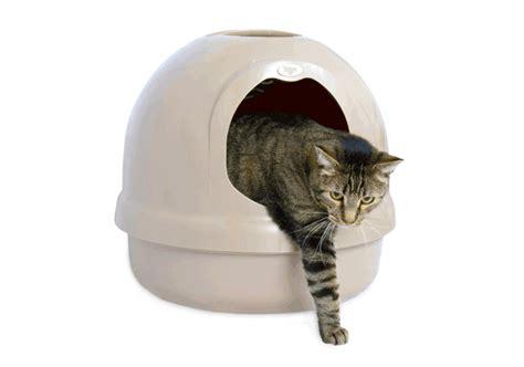 cassetta gatto cassetta gatto autopulente 28 images catgenie 232 l