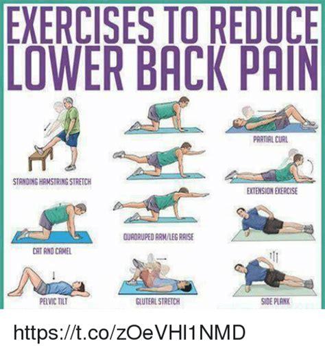 Back Pain Meme - 25 best memes about lower back lower back memes