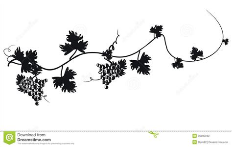 black silhouette of grapes vector illustration stock