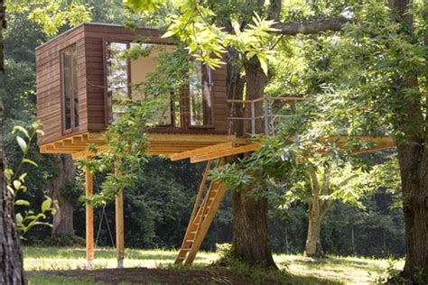 coolest treehouses picture of cool treehouses