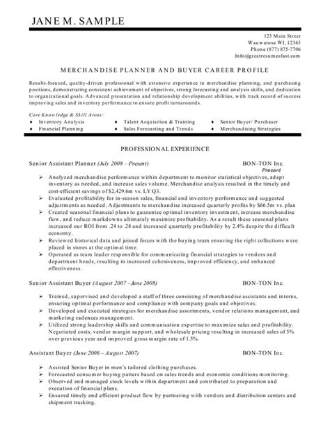 resume summary statement exle resume format