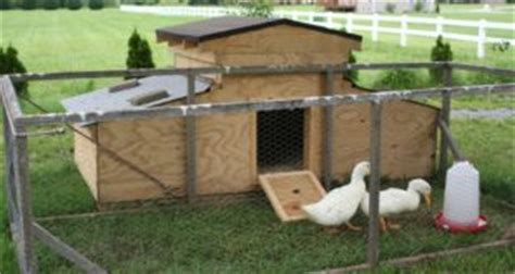 domestic duck house plans domestic duck house plans free