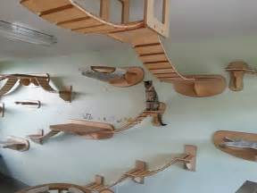 Cat Wall Furniture by Amazing German Designed Cat Climbing Furniture Hauspanther