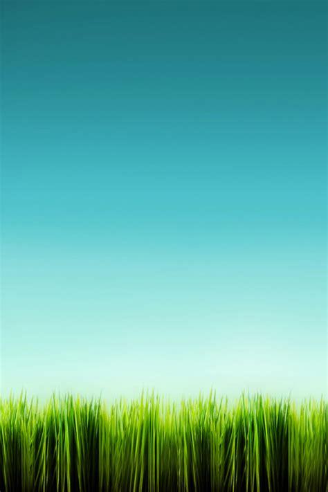 iphone wallpaper green grass green grass iphone wallpaper green grass mobile