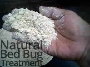 bed bug treatment for lasting bed bug relief