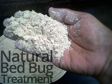 Natural Bed Bug Treatment For Lasting Bed Bug Relief