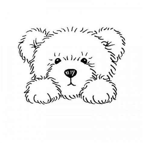 coloring page of a bear head http media cache ak0 pinimg com originals bf d3 54
