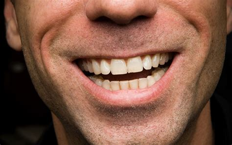 kitchener waterloo dental office dr alison midgley home
