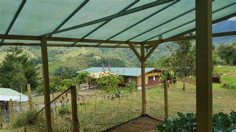 häuser zur verkaufen zu verkaufen 4 9 ha farm mit haus gem 252 segarten zur