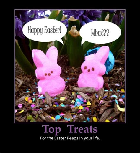happy easter  pictures   images