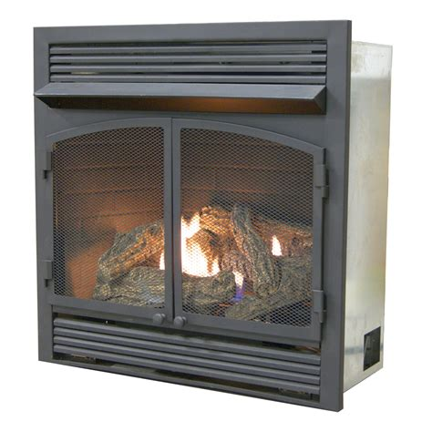 dual fireplace insert dual fuel fireplace insert zero clearance with remote