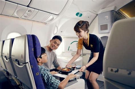 Aircraft Cabin Cleaner by Cabin Cleaning Feature Main Image Delta Airlines Cabin