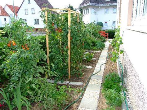 tomaten ausgeizen ab wann tomaten ab ins beet wann page 2 mein sch 246 ner