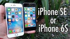 iPhone SE vs iPhone 6s: Which should you buy?   Pocketnow