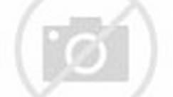 World's Sharpest Kitchen Knife! - (Razor Sharp!)
