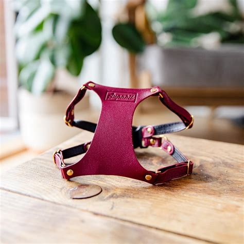 Cat Harness Leather