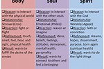 Difference Between Soul and Spirit in Bible