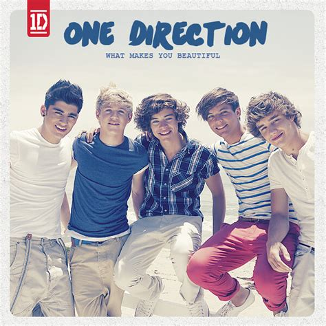One Direction What Makes You Beautiful Cover