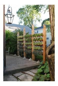 sichtschutz mauer garten 20 excellent diy exles how to make lovely vertical garden