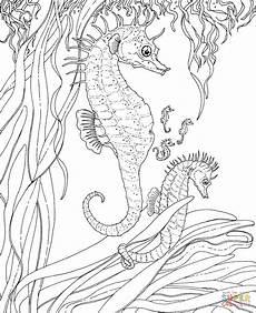 Ausmalbilder Meerjungfrau Pferd Mermaid And Sea Coloring Pages Get Coloring Pages