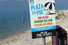 kroatien sandstrand cing kroatien crikvenica hotels mit hundestrand