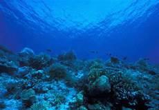 Si Gulali Kenapa Air Laut Biru