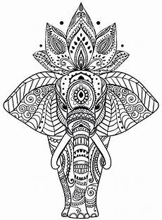 coloring pages mandalas animals 17087 17 best images about doodles more on doodle flowers zentangle patterns and sketch