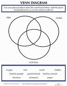 products made from plants venn diagram worksheet