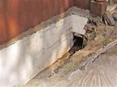 putz für feuchte wände feuchte kellerw 228 nde sanieren ratgeber bauhaus 214 sterreich