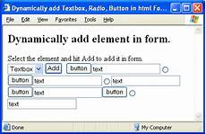 dynamically add button textbox input radio elements in html form using javascript