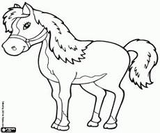 malvorlagen wettbewerb pferd ausmalbilder ausmalen