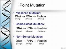 gene mutation and its types