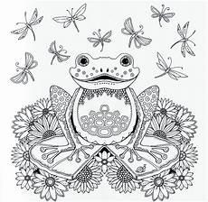 Frosch Ausmalbild Erwachsene Ausmalbilder Erwachsene Frosch Kostenlos Zum Ausdrucken