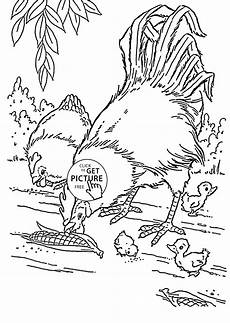 realistic hen and rooster coloring page for kids animal coloring pages printables free wuppsy com